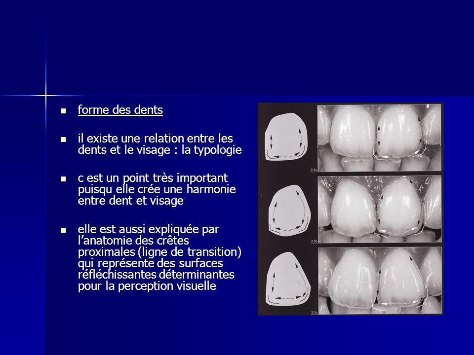 forme des dents il existe une relation entre les dents et le visage : la typologie.