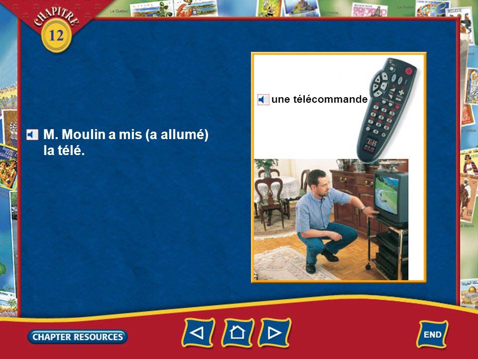 M. Moulin a mis (a allumé) la télé.