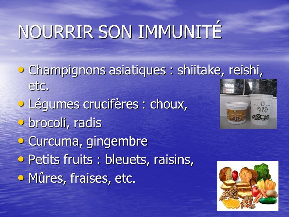 NOURRIR SON IMMUNITÉ Champignons asiatiques : shiitake, reishi, etc.