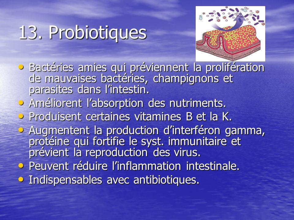 13. Probiotiques Bactéries amies qui préviennent la prolifération de mauvaises bactéries, champignons et parasites dans l'intestin.