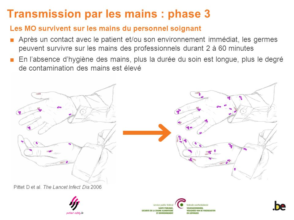 Transmission par les mains : phase 3