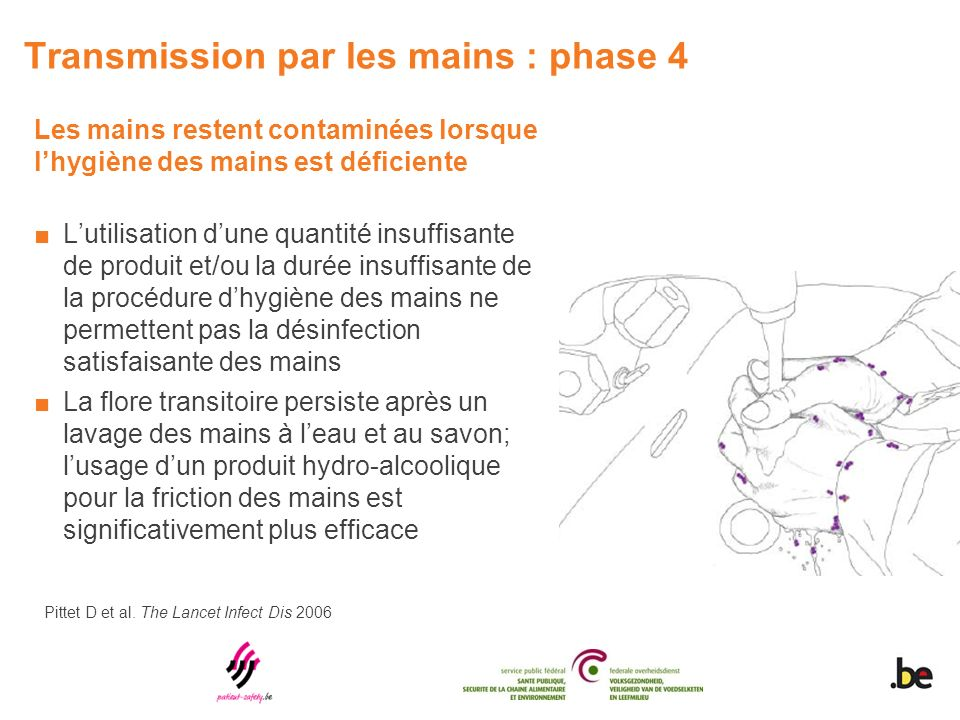 Transmission par les mains : phase 4