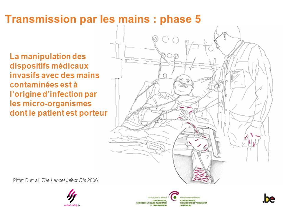 Transmission par les mains : phase 5