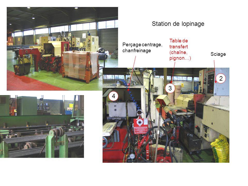Station de lopinage 2 3 4 Table de transfert (chaîne, pignon…)