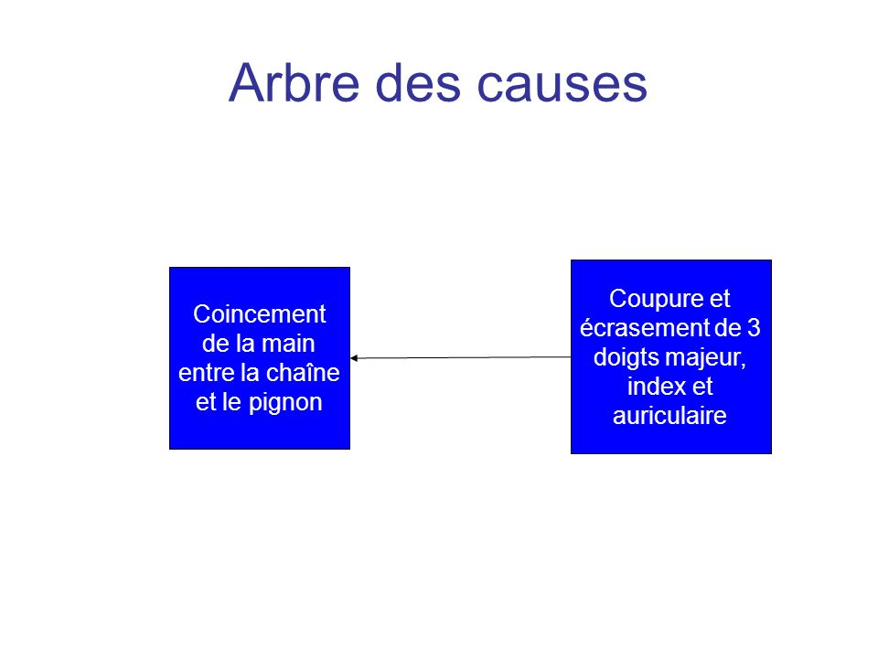 Arbre des causes Coupure et écrasement de 3 doigts majeur, index et auriculaire.