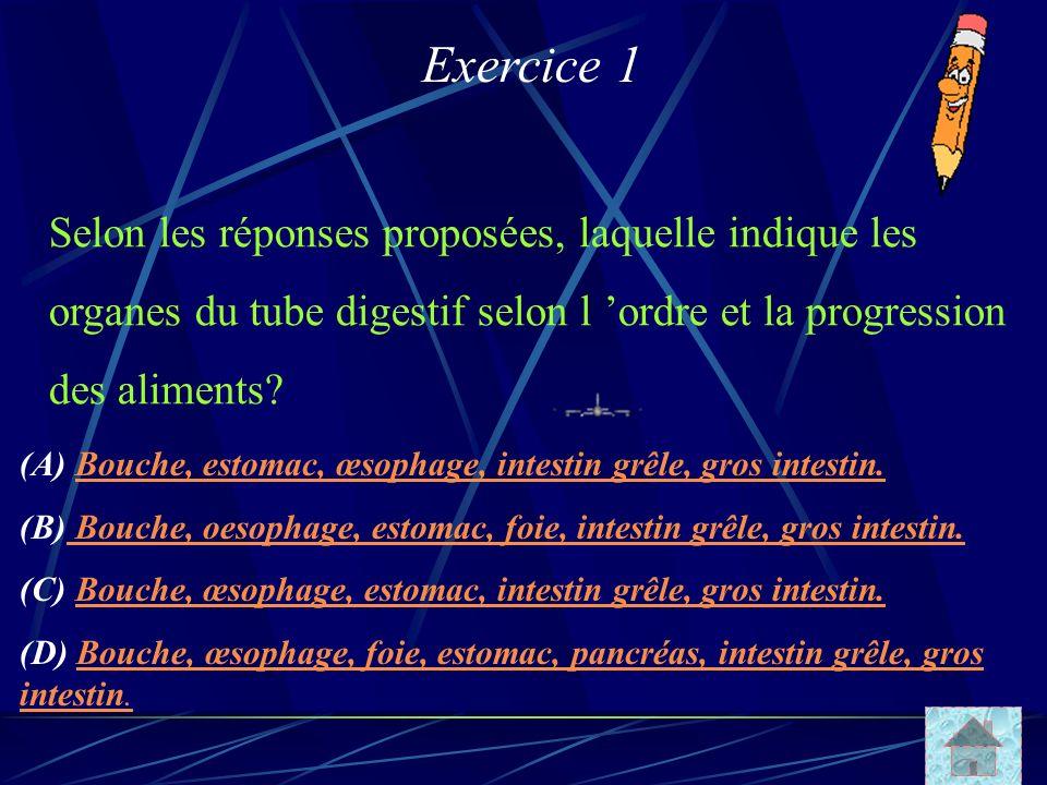 Exercice 1 Selon les réponses proposées, laquelle indique les