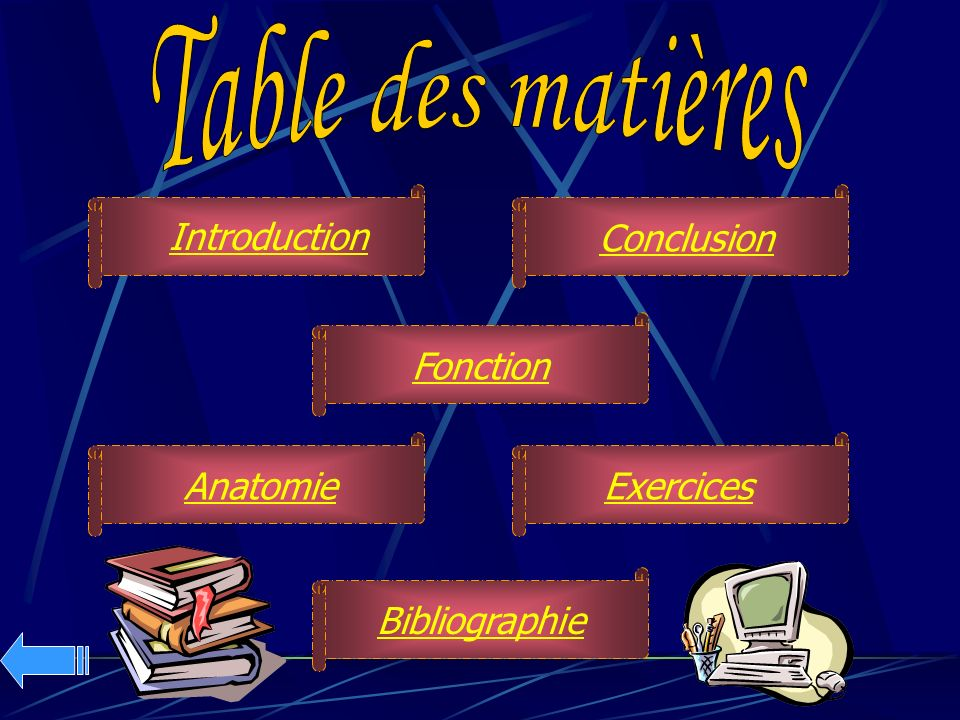Table des matières Introduction Conclusion Fonction Anatomie Exercices