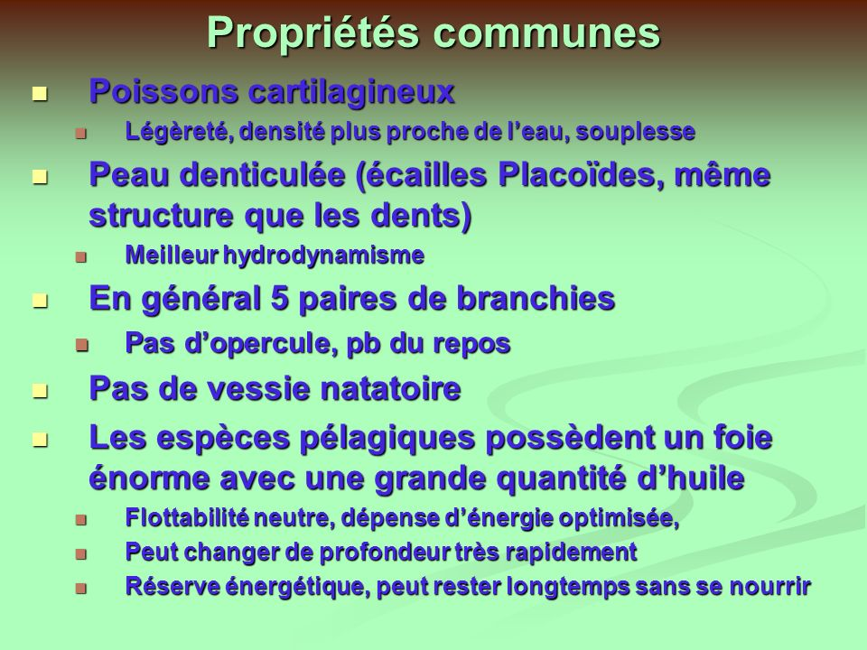 Propriétés communes Poissons cartilagineux