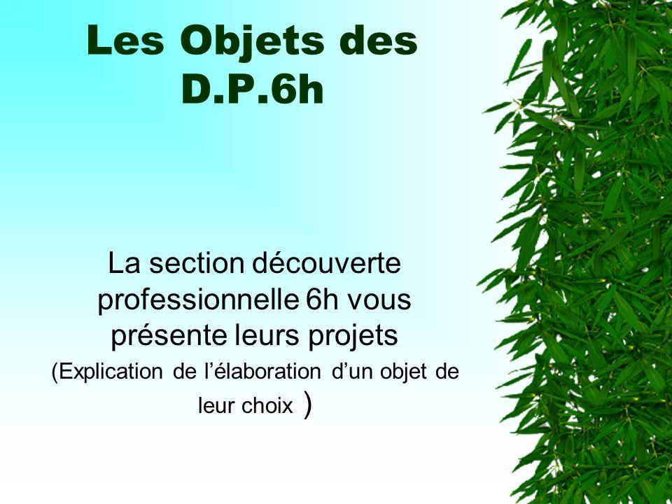 Les Objets des D.P.6h La section découverte professionnelle 6h vous présente leurs projets.