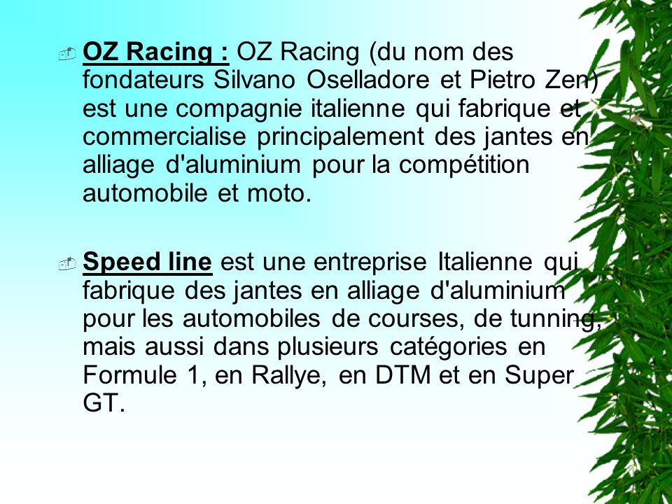 OZ Racing : OZ Racing (du nom des fondateurs Silvano Oselladore et Pietro Zen) est une compagnie italienne qui fabrique et commercialise principalement des jantes en alliage d aluminium pour la compétition automobile et moto.