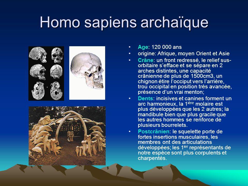 Homo sapiens archaïque