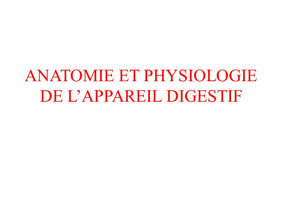 Anatomie et physiologie de l'appareil digestif ppt