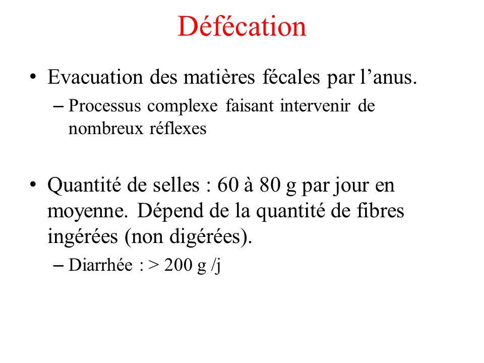 Défécation Evacuation des matières fécales par l'anus.