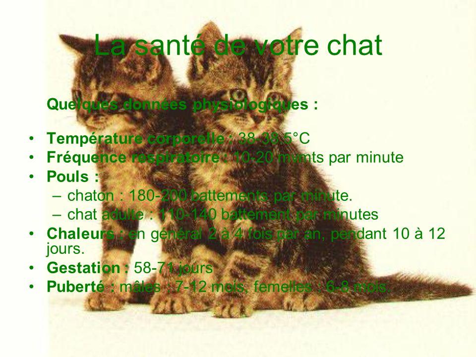 La santé de votre chat Température corporelle : 38-38.5°C