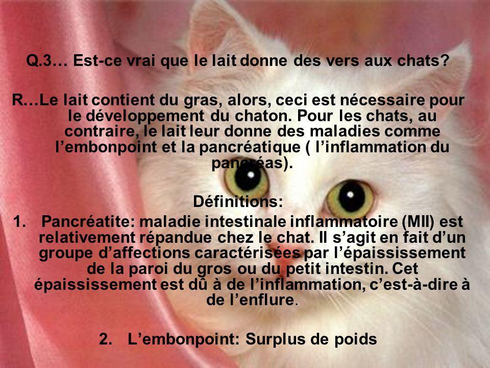 Q.3… Est-ce vrai que le lait donne des vers aux chats