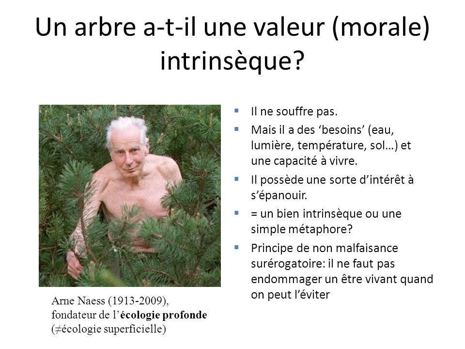 Un arbre a-t-il une valeur (morale) intrinsèque