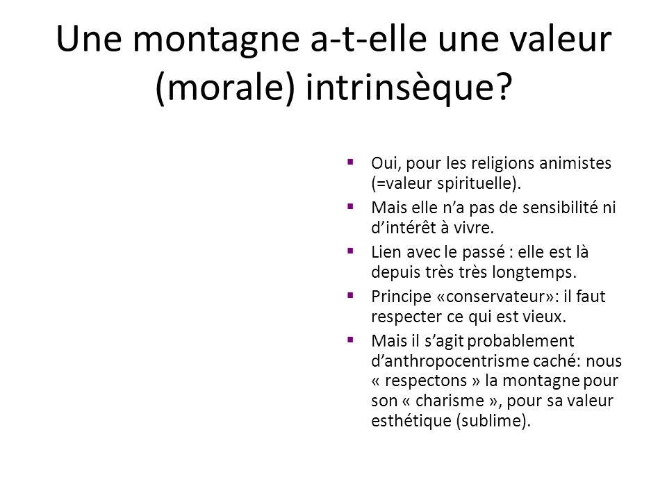 Une montagne a-t-elle une valeur (morale) intrinsèque