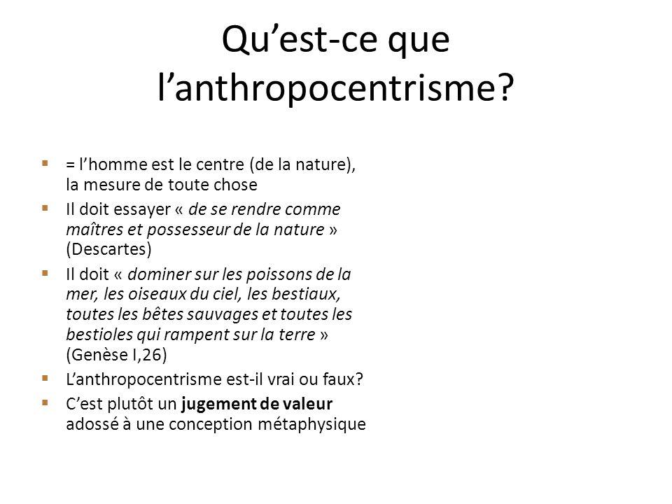 Qu'est-ce que l'anthropocentrisme
