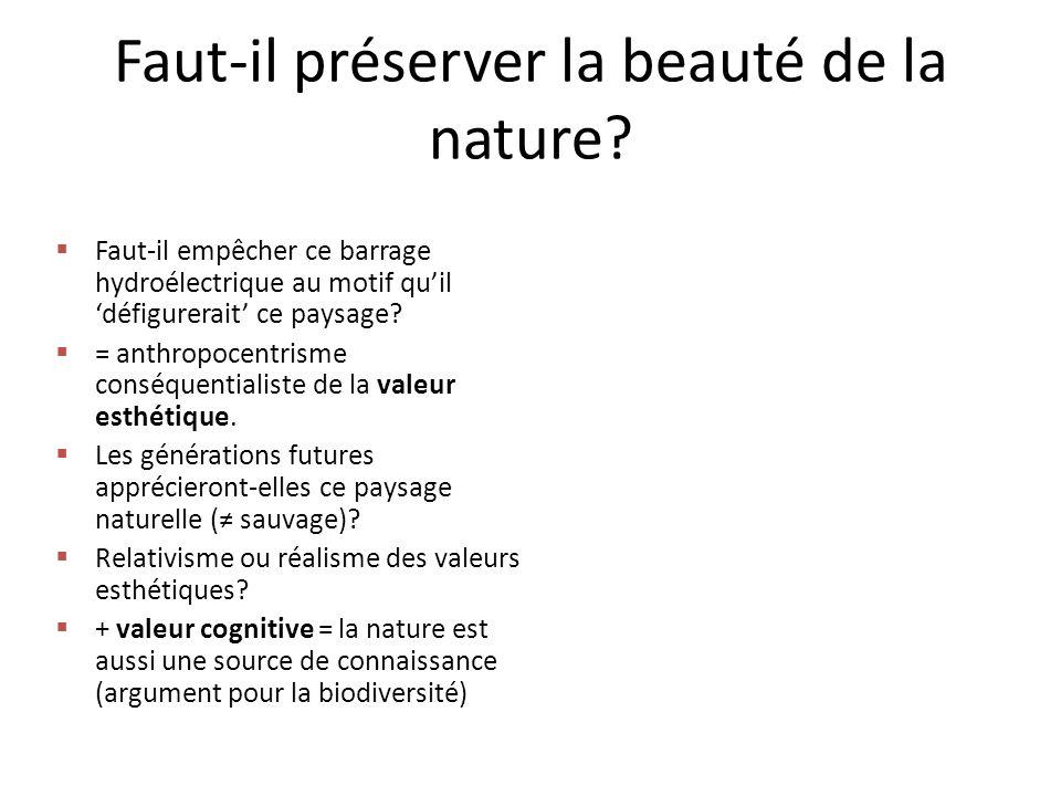 Faut-il préserver la beauté de la nature