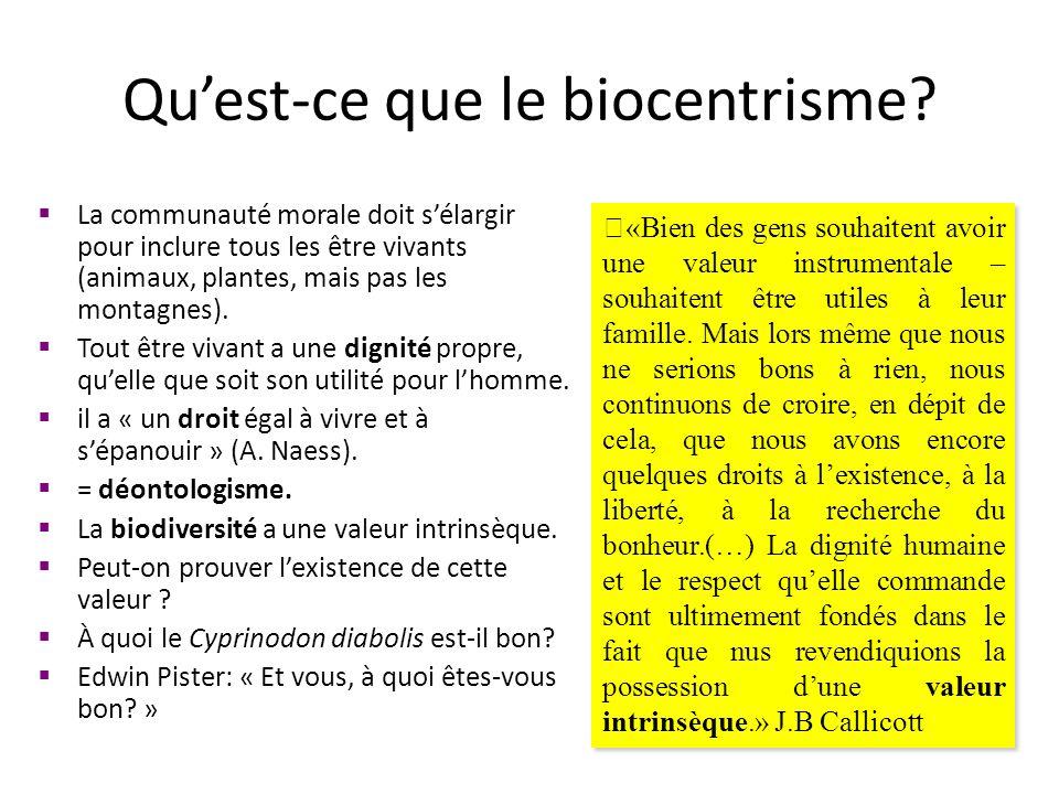Qu'est-ce que le biocentrisme