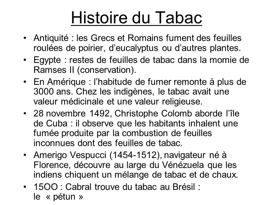 Histoire du Tabac Antiquité : les Grecs et Romains fument des feuilles roulées de poirier, d'eucalyptus ou d'autres plantes.
