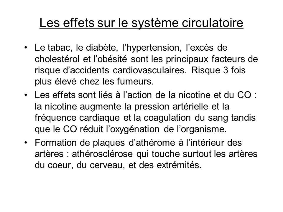 Les effets sur le système circulatoire