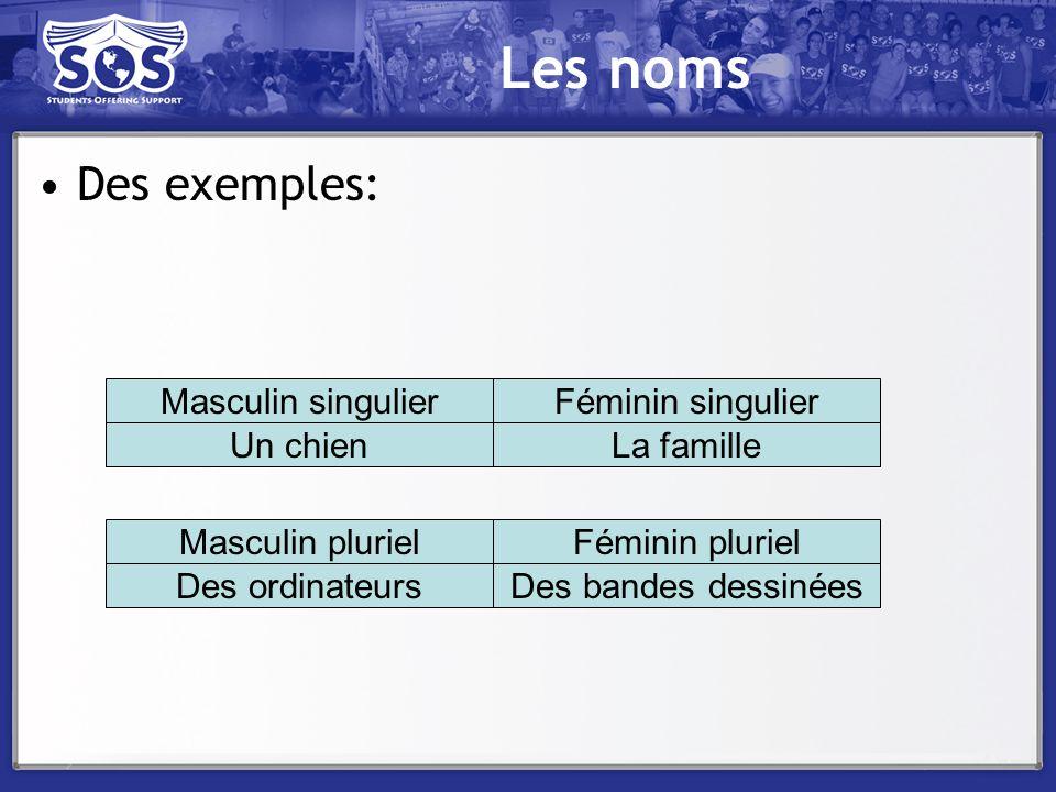Les noms Des exemples: Masculin singulier Féminin singulier Un chien