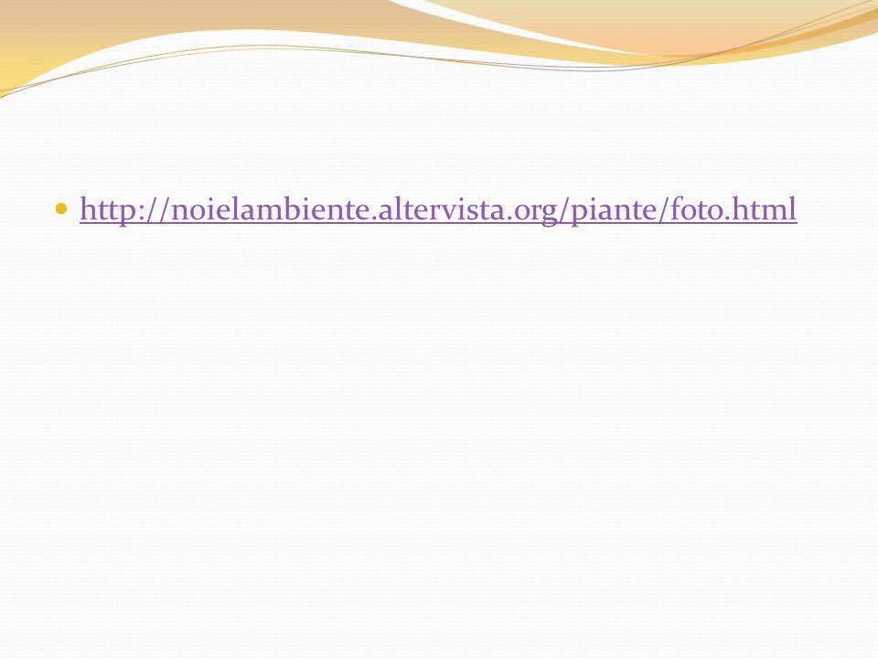 http://noielambiente.altervista.org/piante/foto.html