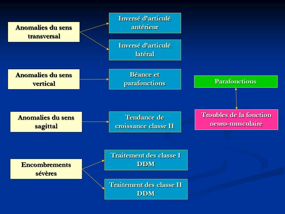Inversé d'articulé antérieur Anomalies du sens transversal
