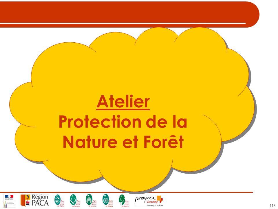 Protection de la Nature et Forêt