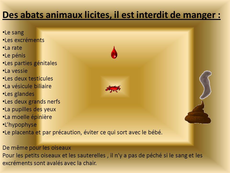 Des abats animaux licites, il est interdit de manger :