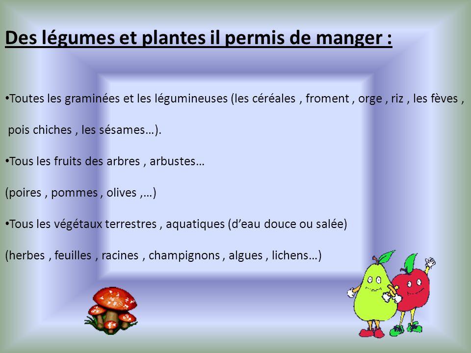 Des légumes et plantes il permis de manger :
