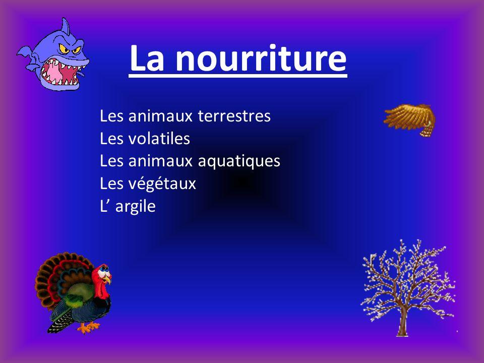 La nourriture Les animaux terrestres Les volatiles