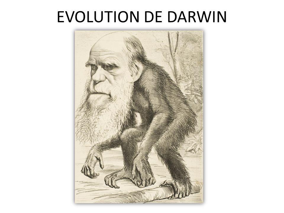 EVOLUTION DE DARWIN