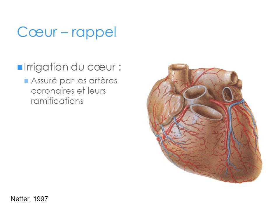 Cœur – rappel Irrigation du cœur :
