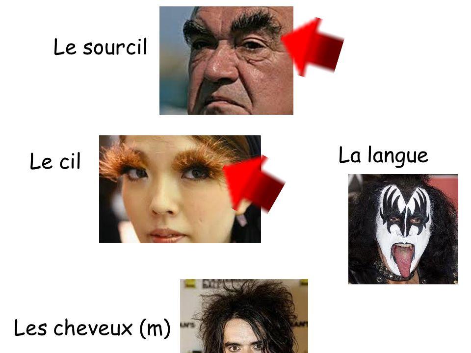 Le sourcil La langue Le cil Les cheveux (m)