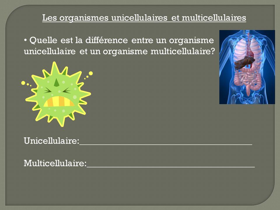 Les organismes unicellulaires et multicellulaires