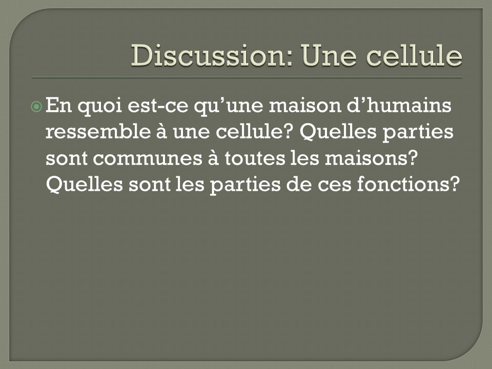 Discussion: Une cellule