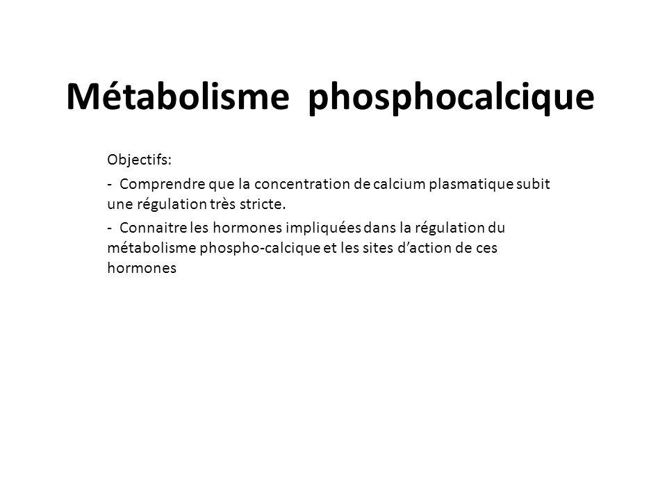 Troubles phosphocalciques definition