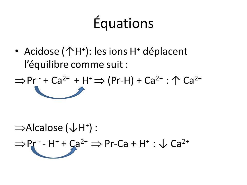 Équations Acidose (↑H+): les ions H+ déplacent l'équilibre comme suit : Pr - + Ca2+ + H+  (Pr-H) + Ca2+ : ↑ Ca2+