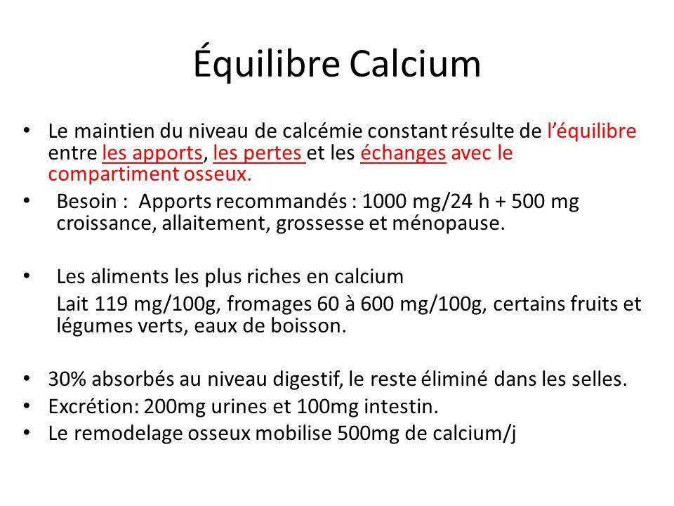 Équilibre Calcium