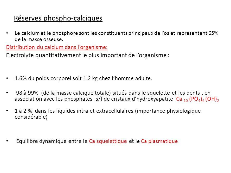 Réserves phospho-calciques