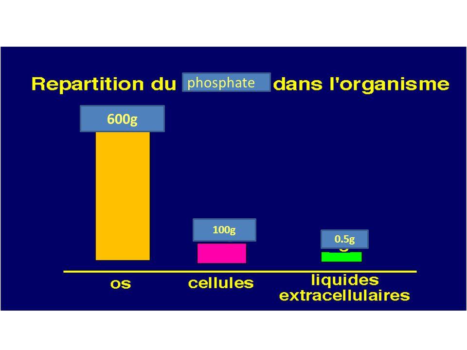 phosphate 600g 100g 0.5g