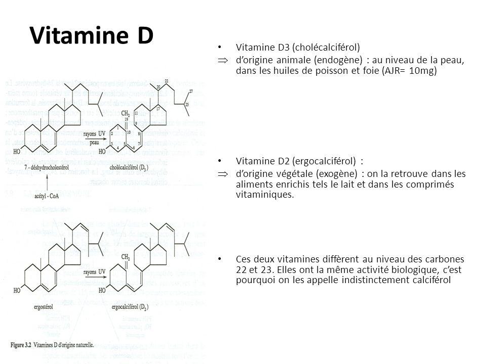 Vitamine D Vitamine D3 (cholécalciférol)