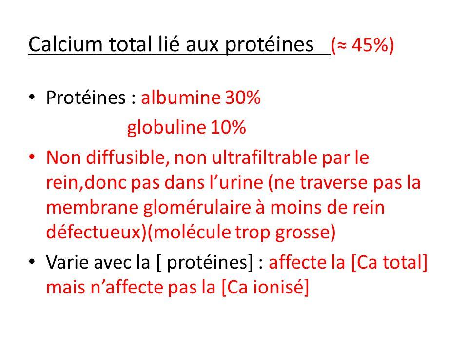 Calcium total lié aux protéines (≈ 45%)