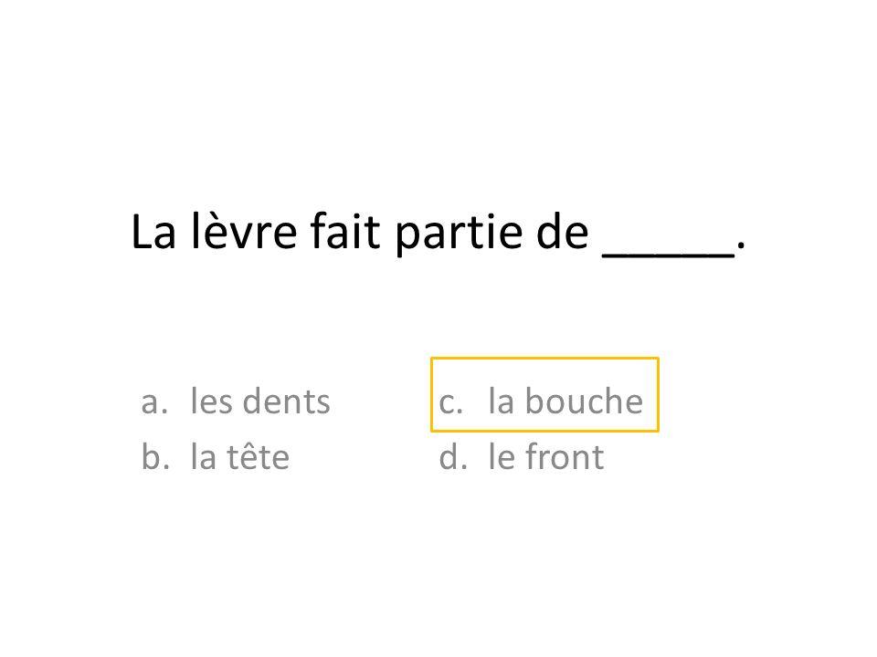 La lèvre fait partie de _____.