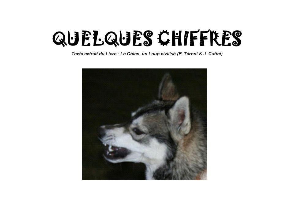 QUELQUES CHIFFRES Texte extrait du Livre : Le Chien, un Loup civilisé (E. Téroni & J. Cattet)