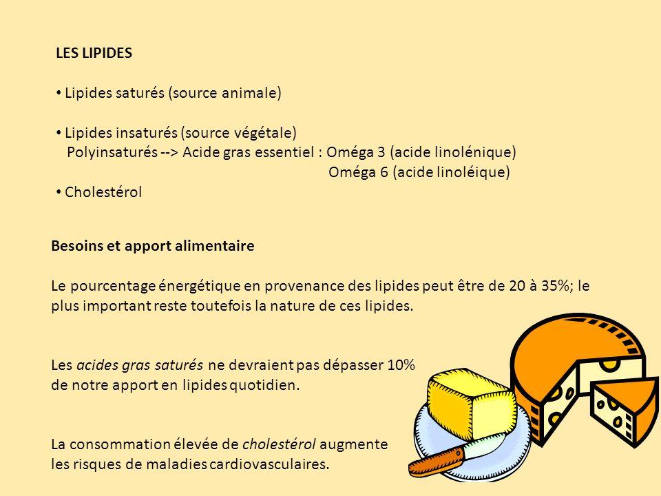 LES LIPIDES Lipides saturés (source animale) Lipides insaturés (source végétale)