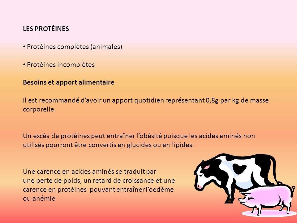 LES PROTÉINES Protéines complètes (animales) Protéines incomplètes Besoins et apport alimentaire.