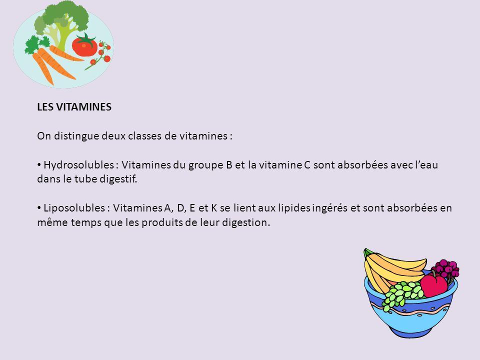LES VITAMINES On distingue deux classes de vitamines :
